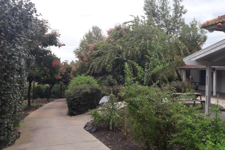 מחוץ לבקתות העץ בכפר הנופש